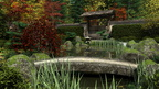 Japanese Garden, Autumn