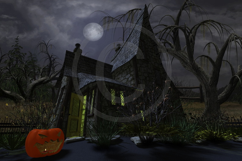 Halloween Witch-House 02.jpg