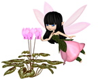Cute Toon Pink Cyclamen Fairy, Flying