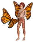 Monarch Butterfly Fairy Boy
